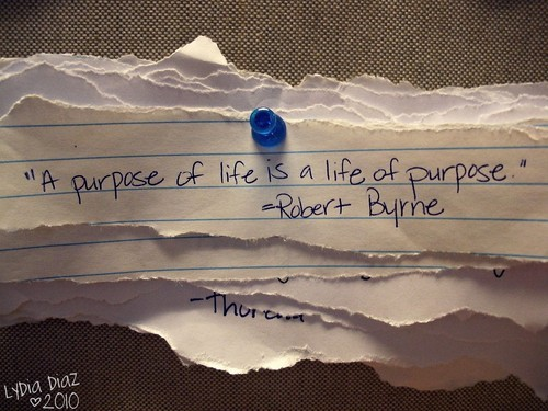 Purpose-life-life-purpose--large-msg-128087297339